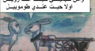 صور صور مضحكة مغربية , فكاهة مش حتلاقيها غير عندنا