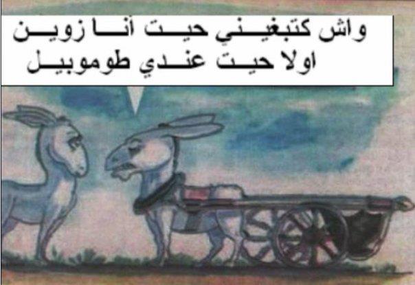 صورة صور مضحكة مغربية , فكاهة مش حتلاقيها غير عندنا