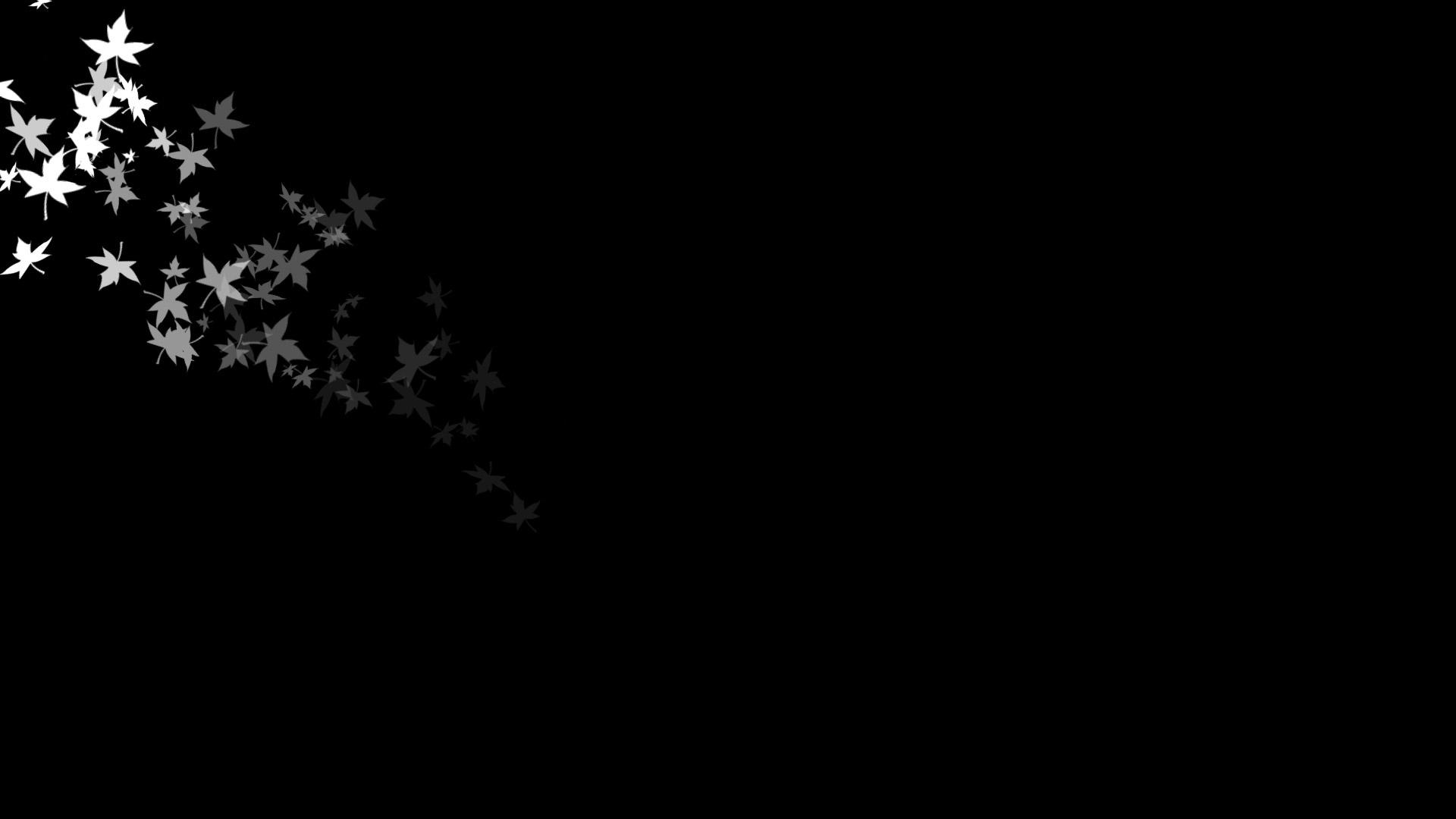 صورة صور لون اسود , غير الخلفية واجعلها مثل ظلام الليل وبة شعاع من النور 71 1