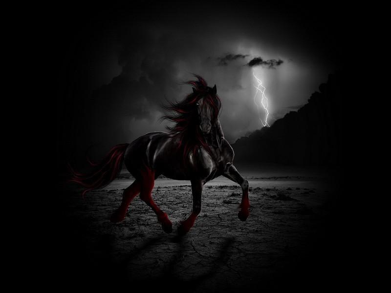 بالصور صور لون اسود , غير الخلفية واجعلها مثل ظلام الليل وبة شعاع من النور 71 4