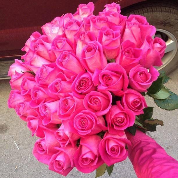 بالصور اجمل صور للورد , اعمل خلفية مميزة لموبيلك من اروع الازهار 82 5