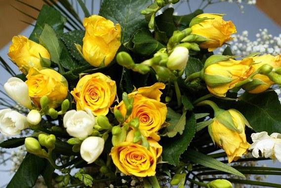بالصور اجمل صور للورد , اعمل خلفية مميزة لموبيلك من اروع الازهار 82 6