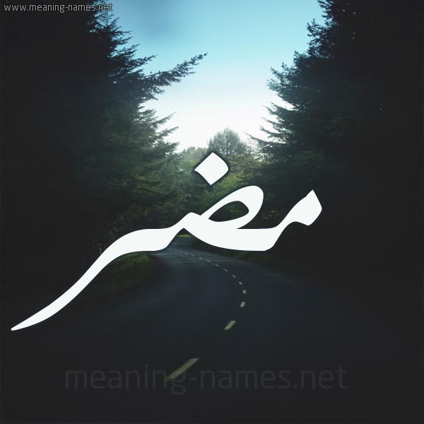 بالصور معنى كلمة mdr , معاني كلمات خاصه باللغه الشات 191 3