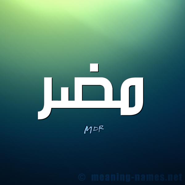 بالصور معنى كلمة mdr , معاني كلمات خاصه باللغه الشات 191 9