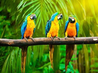 بالصور من اجمل مخلوقات الله , اروع صور الابداع في كل ما خلقه الله 205 4
