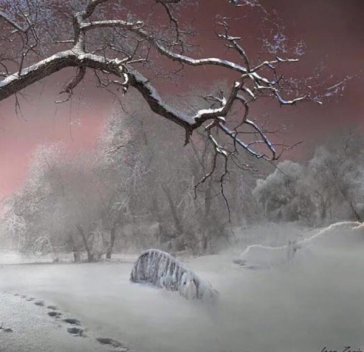 بالصور برودكاست عن الشتاء , صور رمزيات وخلفيات تعبر عن البرد الشديد 219 5