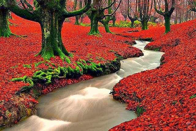 بالصور اجمل طبيعة على وجه الارض , جمال ساحر طبيعي في الكون 316 6