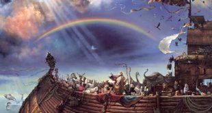صوره ما هي خطيئة سيدنا نوح عليه السلام طوال حياته , شائعه توارثتها الاجيال