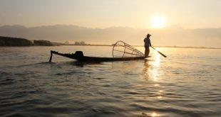 صوره صيد السمك في المنام , تفسير احلام من يصطاد اسماك