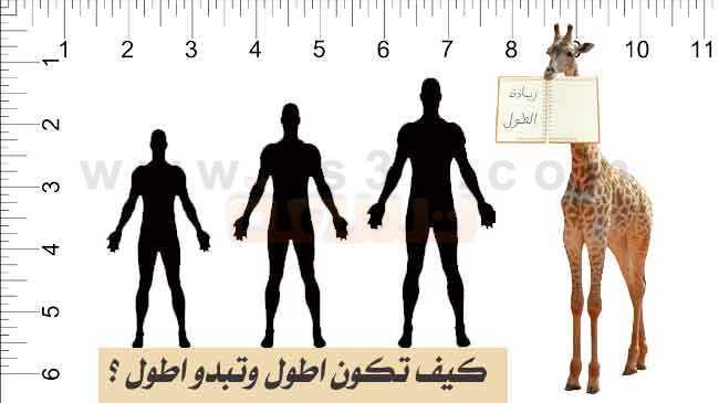 صورة وصفة لزيادة الطول بسرعة , علاج قصر الطول طبيعي