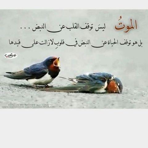بالصور كلمات عن الموت حزينه , احلى صور تعبر عن حزن القلب 773
