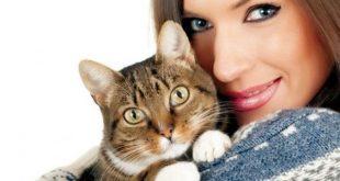 صوره اضرار القطط على الحامل , هل تسبب القطة مخاطر علي المراة
