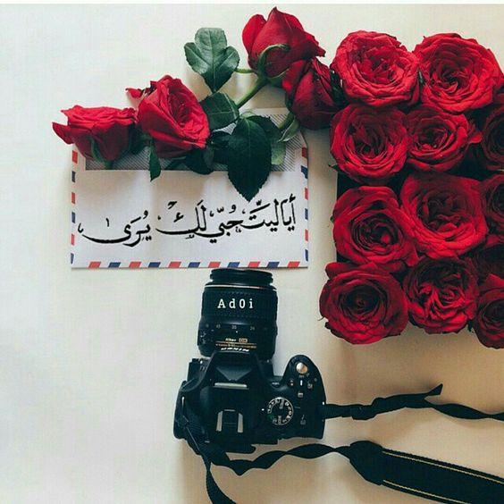 صوره صور ورود مكتوب عليها , خلفيات جميلة للزهور مكتوب عليها