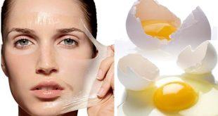 صورة فوائد بياض البيض للبشرة , خلطات من الطبيعة من بياض البيض للبشرة