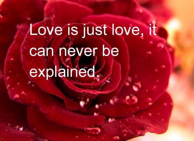 بالصور اجمل الصور الحب مكتوب عليها , حمل صور حب 2019 2093 12