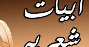صوره ابيات شعريه قصيره , شعر قصير عن الامل فى الحياه