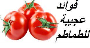 صوره فوائد البندورة للوجه , كيفية استخدام طماطم للبشرة والفوائد