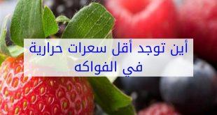 صورة اقل الفواكه سعرات حرارية , ماهي الفاكهة التي يوجد بها سعرات حرارية اقل