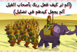 بالصور قصة اصحاب الفيل , اجمل القصص للاطفال قصة اصحاب الفيل 4352 1 110x75