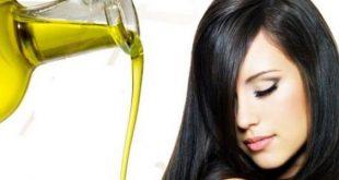 كيفية عمل حمامات زيت للشعر بزيت الزيتون , فوائد حمام زيت الزيتون للشعر
