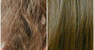 صوره وصفات للشعر الجاف والمتقصف والهايش , وصفات لترطيب الشعر