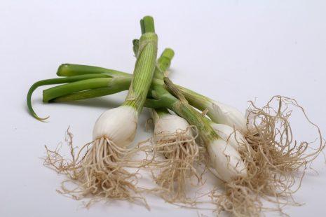 صور البصل الاخضر في المنام , تفسير حلم البصل