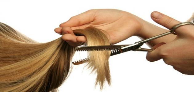 صورة علاج تقصف الشعر , علاجات منزلية لتقصف الشعر