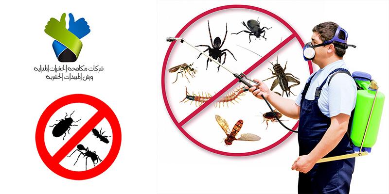 صوره شركة مكافحة حشرات بجدة , التخلص من الحشرات المزعجه نهائى