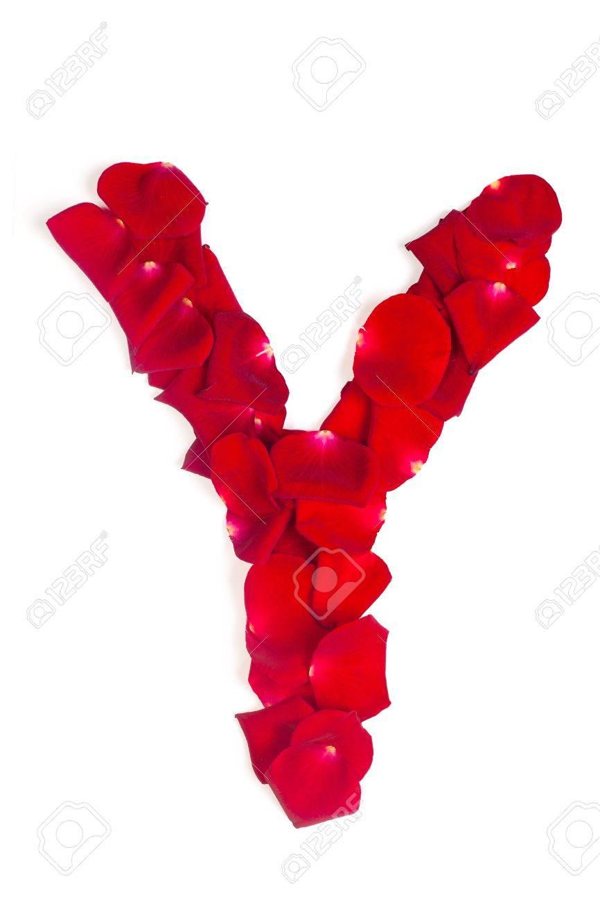 صورة صور حرف y , خلفيات جميلة لحرف Y مميزة للفيسبوك