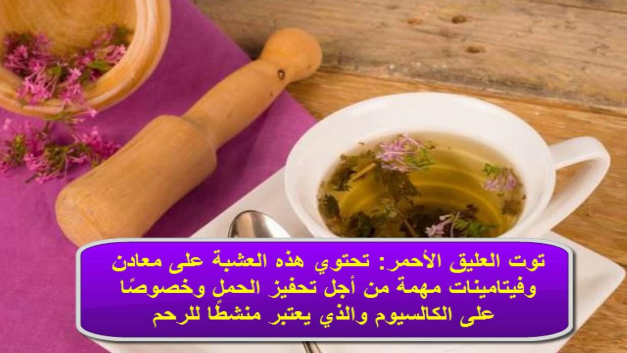 صوره اعشاب للحمل , وصفات تساعدك على الحمل