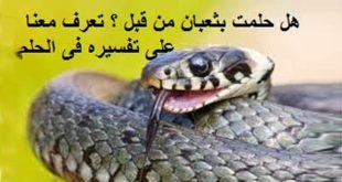 صورة رؤية الثعبان في المنام لابن سيرين , تفسير حلم الثعبان فى المنام