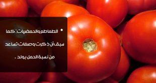 صوره الحمية الغذائية للحمل بولد , زياده الفرصه لانجاب ولد