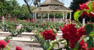 صورة البليدة مدينة الورود , اجمل مدن الجزائر الروعه