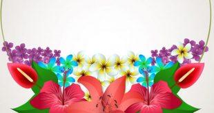 صورة خلفيات بوربوينت ورود , اجمل صور بوربوينت للمحاضرات بالزهور