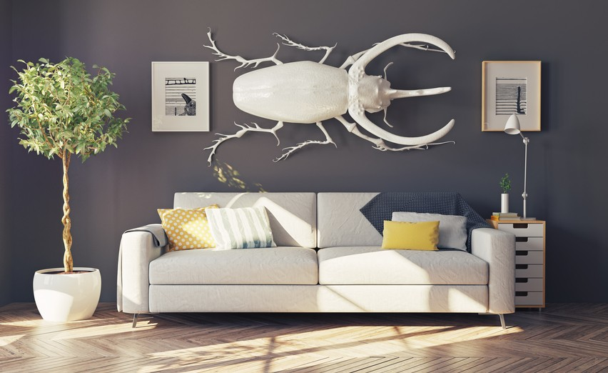 صوره الديكور المنزلي , كيفية اختيار الديكور المناسب الي منزلك