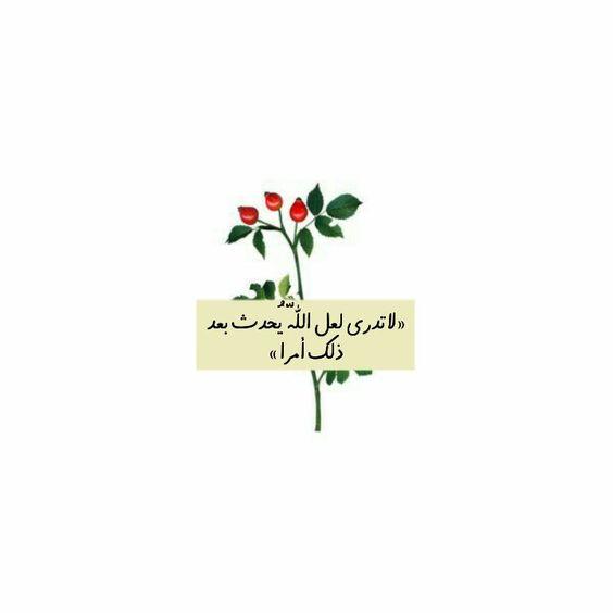 بالصور اروع الصور الدينية , صور بوستات اسلاميات جميلة 2019 4030 2