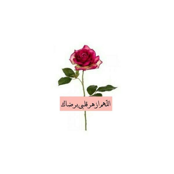 بالصور اروع الصور الدينية , صور بوستات اسلاميات جميلة 2019 4030