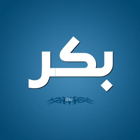 صوره معنى اسم ابو بكر , معنى اسم رجال بكر