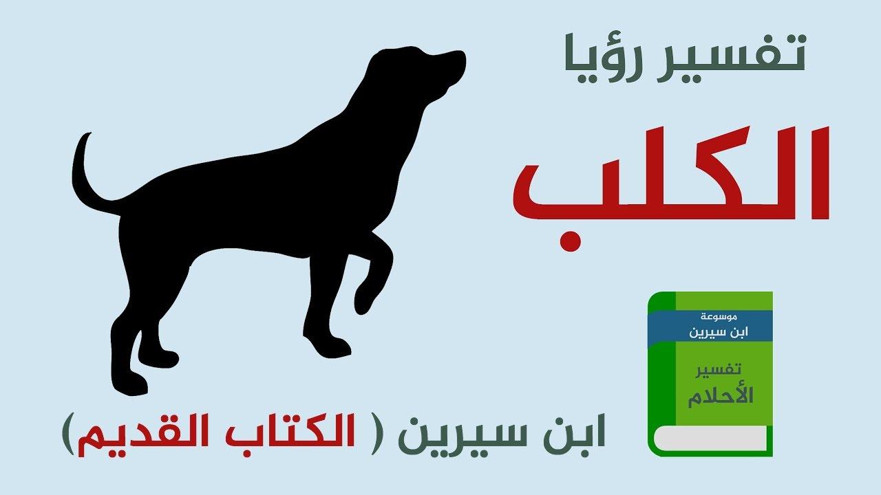 بالصور تفسير رؤية الكلب في المنام , رؤيا الكلاب في نوم ماذا تدل 4517