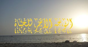 بالصور الوجه الاخر للحياة , درس ديني للشيخ سعيد بعنوان الوجة الاخر للحياة 4545 2 310x165