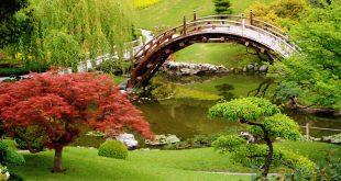 بالصور اجمل الصور في العالم , اجمل واحلى ماتراه العين 4826 7 310x165