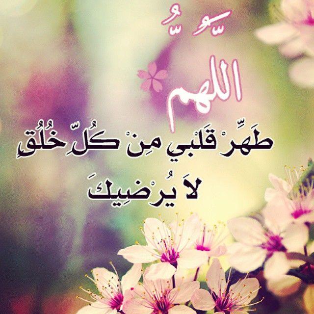 بالصور صور اسلامية رائعة , اجمل وارقى الصور الدينيه الرائعه 4978 10
