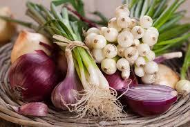 صور فوائد البصل والثوم , من اهم الفوائد التى تعود علينا من تناول البصل والثوم