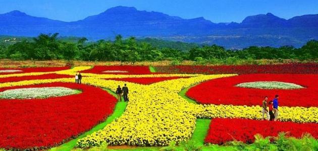 بالصور السياحة في الهند , الهند واجمل المناطق السياحيه بها 5815 4