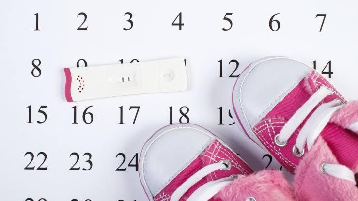 صور متى يتم الحمل , تعرف على ايام التبويض التى يحدث بها الحمل