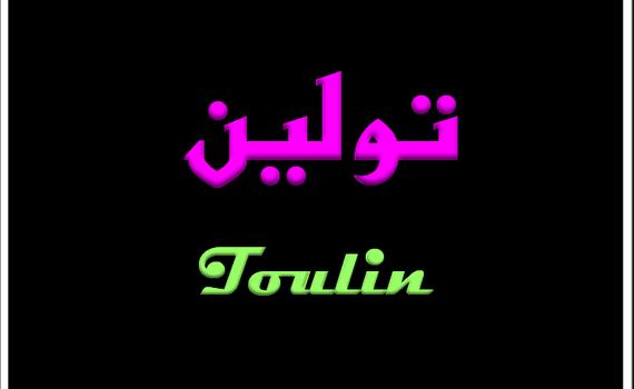 صور معنى اسم تولين , معنى الاسم وصفات حامله