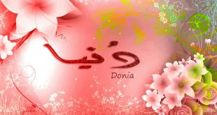 صورة معنى اسم دنيا , معنى اسم البنوته دينا وصفات حامله