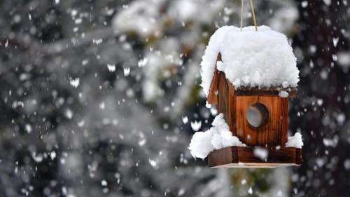 صور تفسير رؤية الثلج في المنام لابن سيرين , تفسير حلم الثلج