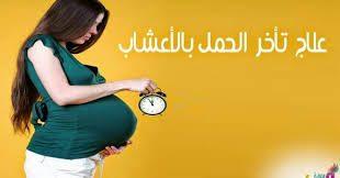صوره علاج الحمل بالاعشاب , اهم الاعشاب التى تساعد فى علاج تاخر الحمل