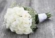 صور صور ورد ابيض , اجمل زهور بيضاء للرسائل
